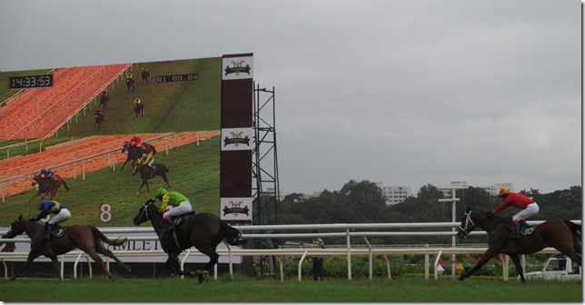 Horse racing in Pune