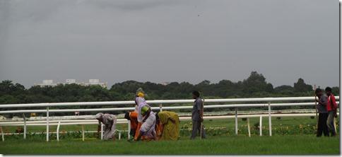 Race course crew