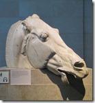 Selene's Horse